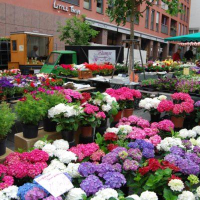 markt-kranz-kraenze-gestecke-blumen-florist-hoer-fulda-36
